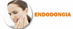 endodoncia boton